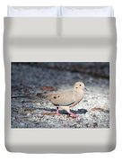 The Chipper Mourning Dove Duvet Cover