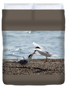 The Courtship Feeding - Series 2 Of 3 Duvet Cover