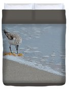 The Curious Little Sanderling 1 Duvet Cover