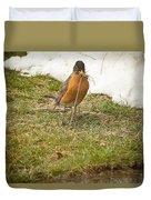 The Early Bird - Robin - Casper Wyoming Duvet Cover