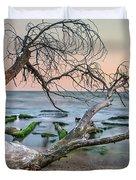 The Fallen Tree Duvet Cover