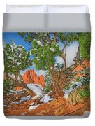 The Ferruginous Earth Of The Rocky Mountain West Duvet Cover