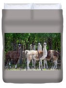 The Five Llamas Duvet Cover
