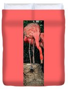 The Flamingo And Her Egg Duvet Cover