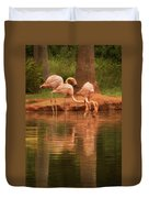 The Flock - The Serenity Of Flamingos At Water's Edge Duvet Cover