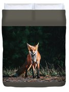 The Fox Duvet Cover