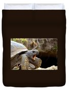 The Great Gopher Tortoise Duvet Cover