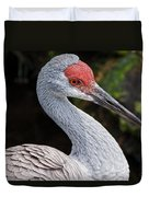 The Greater Sandhill Crane Duvet Cover