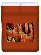The Hoodoos In Bryce Canyon Duvet Cover