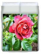 The Hot Cocoa Red Rose Duvet Cover