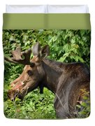 The Hungry Moose Duvet Cover