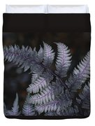 The Leaf Of A Japanese Painted Fern Duvet Cover