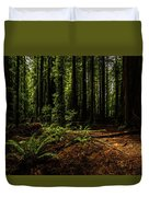 The Light In The Forest No. 2 Duvet Cover