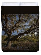 The Oak By The Side Of The Road Duvet Cover