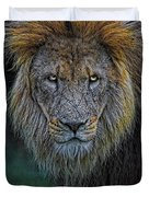 The Old Lion Duvet Cover