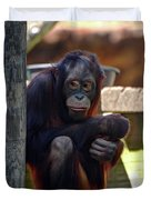The Orangutan Duvet Cover