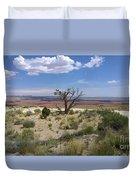 The Painted Desert Of Utah 2 Duvet Cover