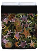 The Parade Of Stars Duvet Cover