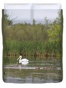 The Pelican And The Ducklings Duvet Cover