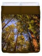 The Portola Redwood Forest Duvet Cover