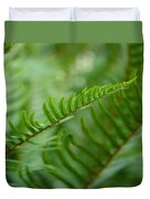 The Quiet Beauty Of Ferns Duvet Cover