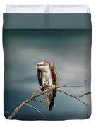 The Raptor - Osprey Duvet Cover