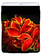 The Reds Of Winter Duvet Cover