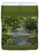 The River In Spring Duvet Cover