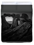 The Roots Of The Sleeping Giant Bw Duvet Cover