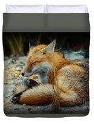 The Sleepy Fox Duvet Cover