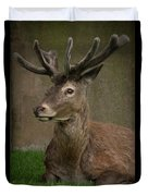 The Stag Duvet Cover