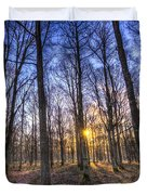 The Sun Ray Forest Duvet Cover