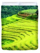 The Terraced Fields Scenery In Autumn Duvet Cover