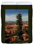 The Tree In Bryce Canyon Duvet Cover