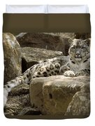 The Watchful Stare Of A Snow Leopard Duvet Cover