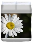 The White Daisy Duvet Cover by Danielle Allard