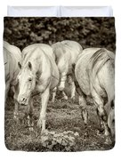 The Wild Horses Of Shannon County Mo 7r2_dsc1111_16-09-23 Duvet Cover