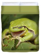 The Yawning Tree Frog Duvet Cover