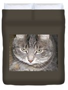 Thinking Holly The Cat Duvet Cover