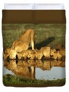Thirsty Lions Duvet Cover
