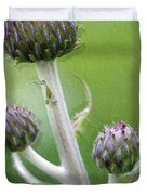 Thistle Stipe  With Buds Duvet Cover by Heiko Koehrer-Wagner