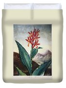 Thornton: Indian Reed Duvet Cover