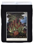 Thornton: Stapelia Duvet Cover