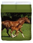 Thoroughbred Chestnut Mare & Foal Duvet Cover