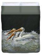 Three American Pelicans Duvet Cover