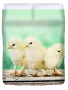 Three Amigos Duvet Cover by Amy Tyler