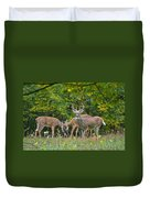 Three Bucks_0054_4463 Duvet Cover