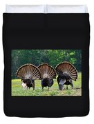 Three Fans Duvet Cover by Todd Hostetter