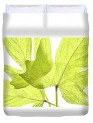 Three Green Leaves Duvet Cover