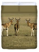 Three Musketeers Duvet Cover